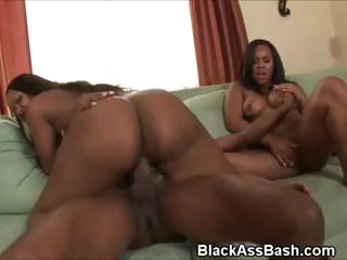 Sooty Girls Round Huge Asses Suck Added to Fucked In Trilogy